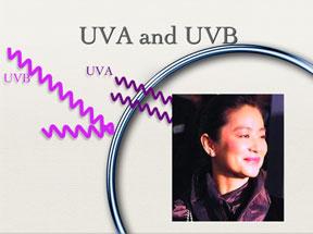 uva_uvb.jpg